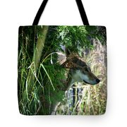 The Stalker Tote Bag