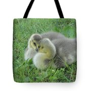 The Stare Down Tote Bag