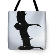 The Stone Birds Tote Bag