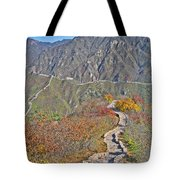 The Stone Steps. Infinity... Tote Bag