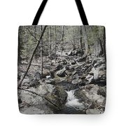 The Stoney Way Tote Bag