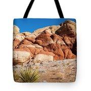 The Striped Rock Tote Bag