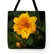 The Summer Blooms Tote Bag