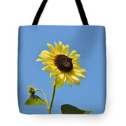 The Sun In The Sky Tote Bag