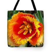 The Sun In You Tote Bag