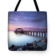 The Sun Watcher Tote Bag