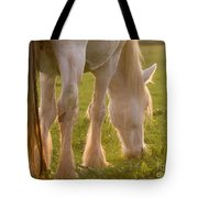 The Sunlight Caught In The Horse Tail Tote Bag