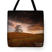 The Sunset Of The Poppies - 2 Tote Bag