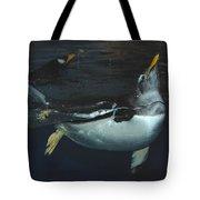 The Swim Tote Bag
