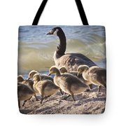 The Swimming Lesson Tote Bag