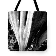 The Swoop Of Fallen Wood Tote Bag by Lorraine Devon Wilke