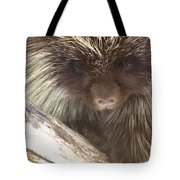 The Tender Side Of Porcupine Tote Bag