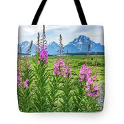 The Tetons Are Grand Tote Bag
