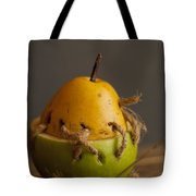 The Theory Of Aristotle Tote Bag