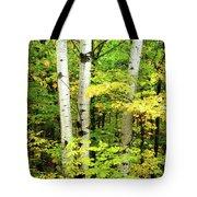 The Three Birch Tote Bag