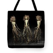 The Three Graces Dance Tote Bag