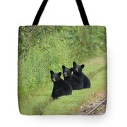 The Three Little Abc Bears Tote Bag