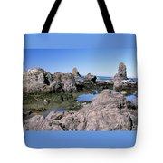 The Tidepools Of Bear Harbor Tote Bag