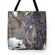 The Tiger Of The Sky Tote Bag
