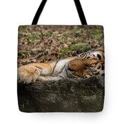The Tiger's Rock  Tote Bag