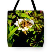 The Tiniest Skipper Butterfly In The Garden Tote Bag