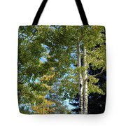 The Top Of The Mountain 2 Tote Bag