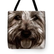 The Toto Tote Bag