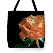 The Touch Of A Rose Tote Bag by Tracy Hall