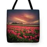 The Tranquil Morning Before Sunrise Tote Bag