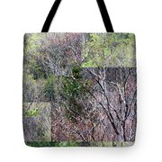 The Transition - Tote Bag