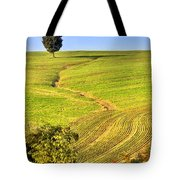 The Tree And The Furrows Tote Bag