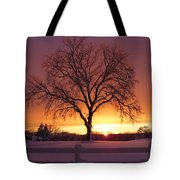 The Tree At Sunset Tote Bag