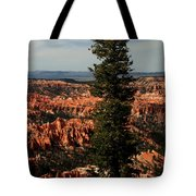 The Tree In Bryce Canyon Tote Bag