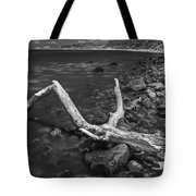 The Tree In The Water. Tote Bag