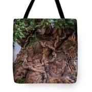 The Tree Of Life Close Tote Bag