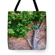 I Grow... Against All Odds  Tote Bag