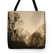 The Trees With Mistletoe. Tote Bag