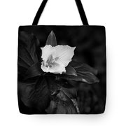 The Trillium Season Tote Bag