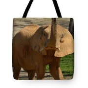 The Trumpeter Sounds Tote Bag
