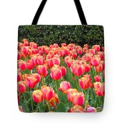 The Tulips Are Coming Tote Bag