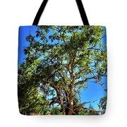 The Turtleback Tree Tote Bag by Lorraine Devon Wilke