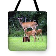 The Twins Tote Bag by Kathy DesJardins