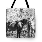 The Two Beauties Tote Bag