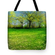 The Umbrella Tree Tote Bag