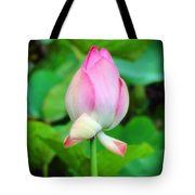 The Unfurling Tote Bag