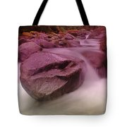 The Unmoveable  Tote Bag