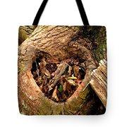 The Valentine Tree 2 Tote Bag
