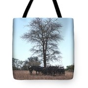 The Value Of A Shade Tote Bag