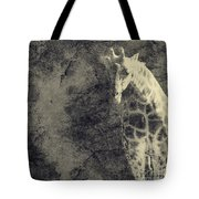 ...the Vast Expanses Of The Earth Tote Bag