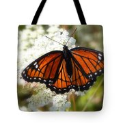 The Viceroy And The Queen Tote Bag